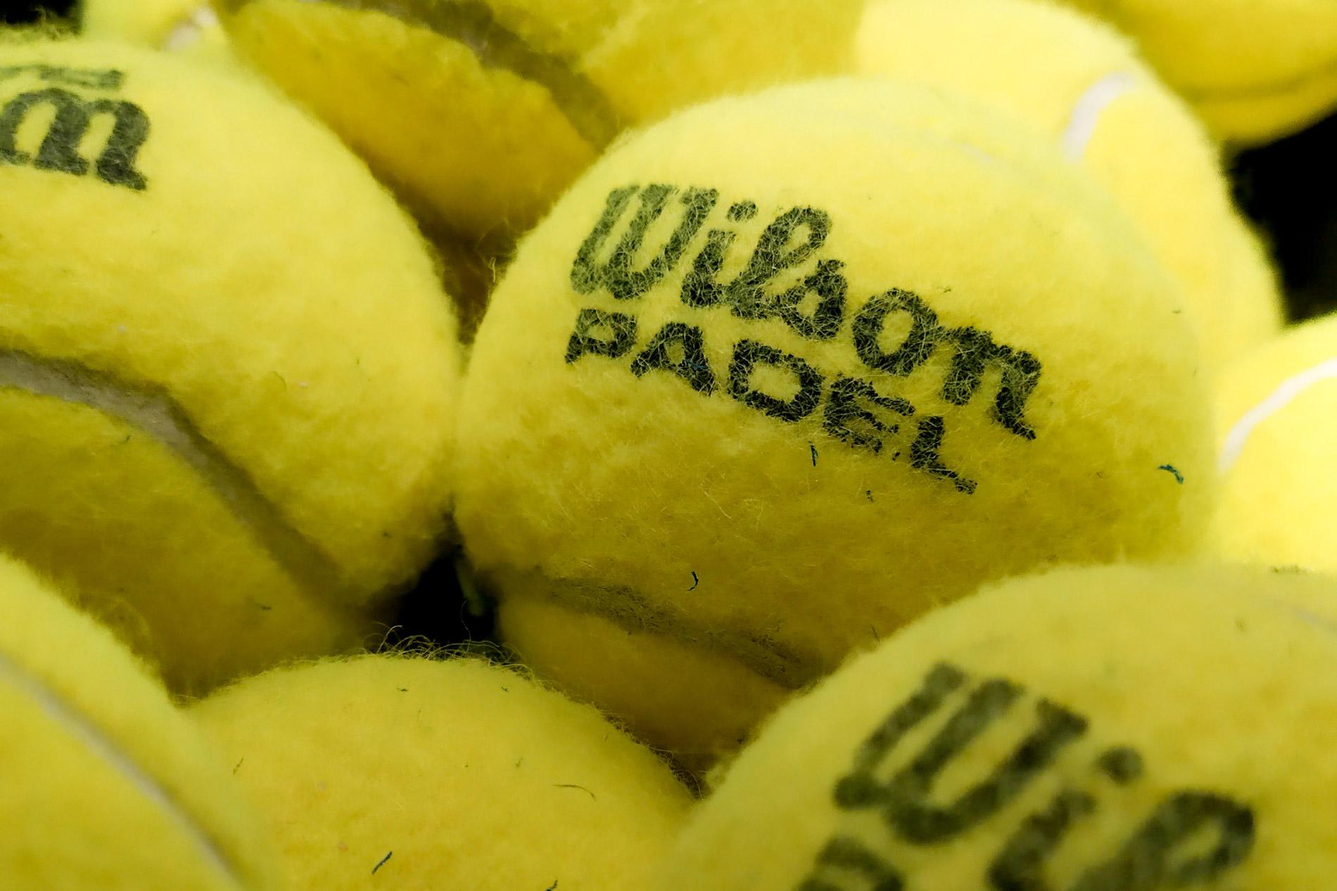 pelotas padel Wilson
