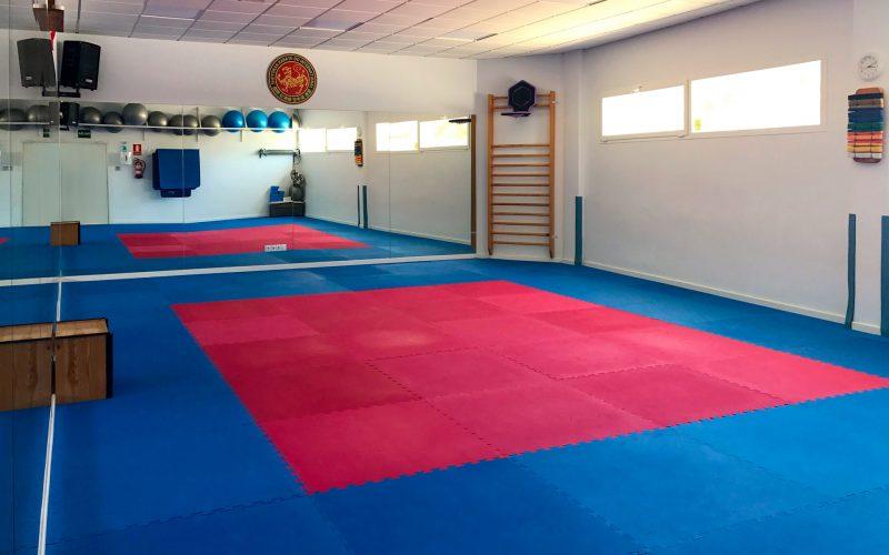 Clases de artes marciales en Mijas y Fuengirola